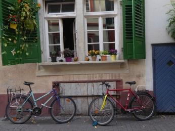 Heidelberg4