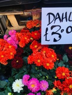 Colombia Road Flower Market 3